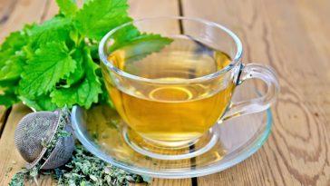 Benefícios Para Saúde do Chá de Erva Cidreira