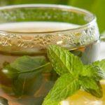 Benefícios do Chá de Boldo