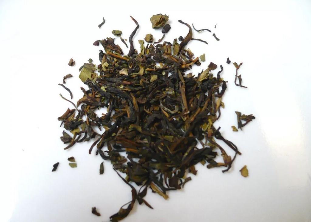 folhas de cha nilgiri